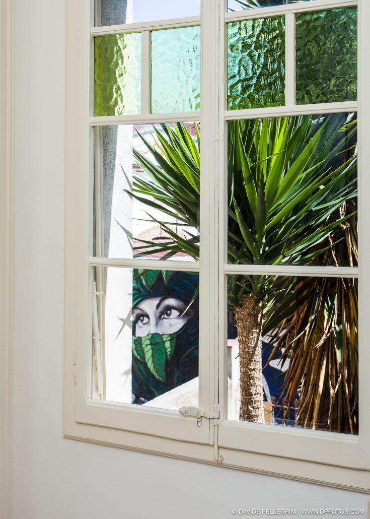 Detalle del jardín desde una ventana
